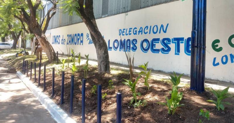 NUEVOS TRABAJOS DE FORESTACIÓN Y ERRADICACIÓN DE BASURALES